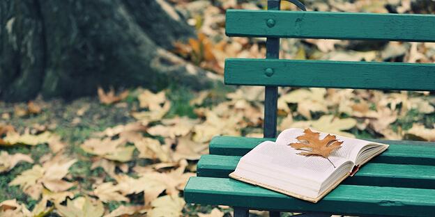 Lesen im Herbst