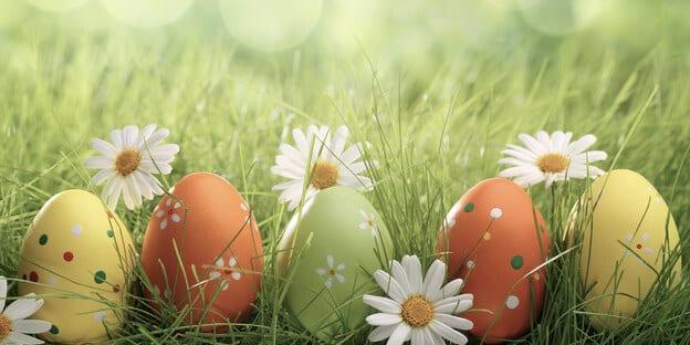 Frühlingswiese mit bemalten Eiern