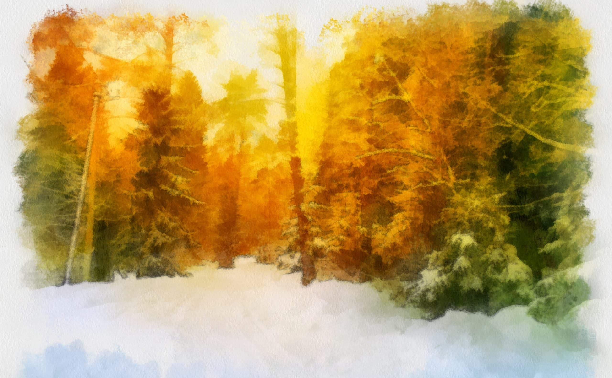 Bäume leuchtend